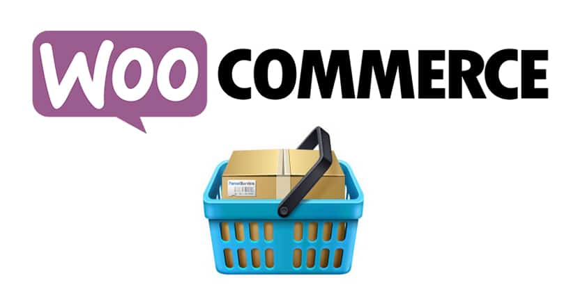 How to Setup Conversion Tracking in WooCommerce